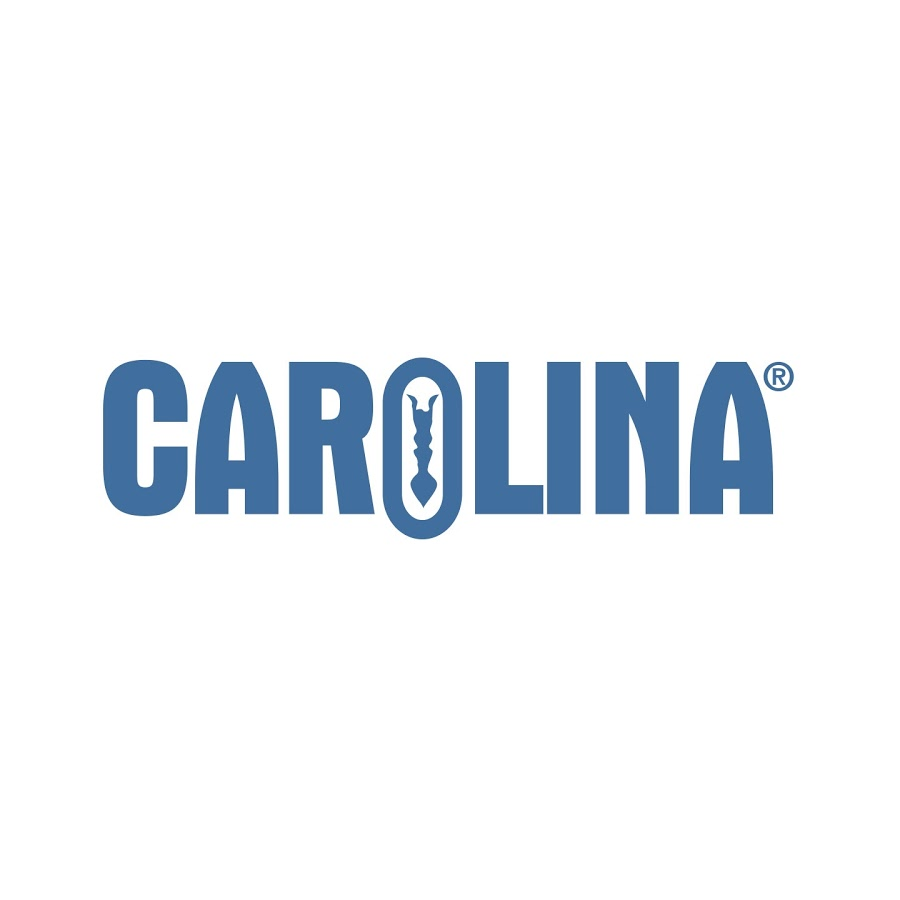 Carolina coupons and Carolina promo codes are at RebateCodes